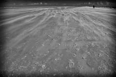sand storm (ale_brando) Tags: dk denmark skagen sand storm wind beach shore d700 horizon travel flickraward nikonfx fx