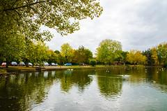 {Lake-scene}FCC146