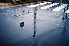 Leica M-ATyp127) APO-SUMMICRON-M 50mm/f2 ASPH. (Camera of Bob) Tags: leicamatyp127aposummicronm50mmf2asph leica matyp127 aposummicronm 50mmf2 asph