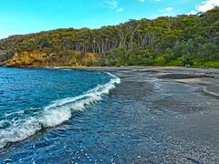 Beach, waves, bush and sun (elphweb) Tags: falsehdr fhdr seaside sea ocean water trees forest bush foliage australia outdoor waves