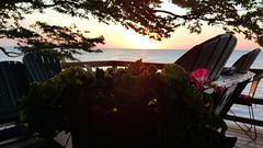 Plant in Focus - Sunset back patio - Summer Evening (Smith6612) Tags: lake erie water freshwater summer deep sunset deck patio beach