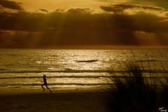 La corsa (LightRapsody) Tags: corsa mare tramonto giallo bambino