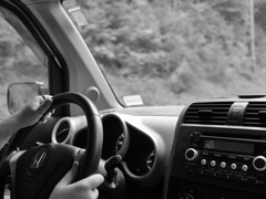 232 : 366 (grongar) Tags: hyla car steeringwheel