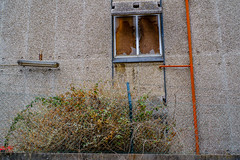 abandoned - abandonado (paulopar.rodrigues) Tags: arquitectura portugal sintra abandonado abandoned architecture art cidade city color cor cores fachadas fuji janela local luz pattern photofoto textura texture urban urbano window