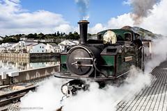 Dark and Long (jonbradbury) Tags: canonef35mmf20 canoneos6d darktrain earlofmerioneth festiniograilway iarllmeirionnydd porthmadog uk jonbradbury jonbradburycom narrowgauge railway reflections steam train