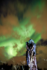 Northern Light (Jan-Roger Olsen) Tags: 2015 2015october auroraborealis dark green harstad longexposure natt natur nature night nordlys norge northernlight norway october oktober outdoor stars tripod troms no