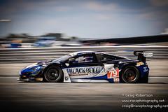 British GT Championship Snetterton 2016-01584-2 (WWW.RACEPHOTOGRAPHY.NET) Tags: britgt britishgt greatbritain msv msvr snetterton 79 alasdairmccaig blackbullecurieecosse gt3 mclaren650s robbell