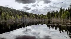 Pb_8210097-Panorama-2