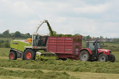Claas Jaguar 900 SPFH filling a Redrock Silage Trailer drawn by a Massey Ferguson 6480 Tractor (Shane Casey CK25) Tags: claas jaguar 900 spfh filling redrock silage trailer drawn massey ferguson 6480 tractor mf red agco carraignavar silage16 silage2016 grass grass16 grass2016 winter feed fodder county cork ireland irish farm farmer farming agri agriculture contractor field ground soil earth cows cattle work working horse power horsepower hp pull pulling cut cutting crop lifting machine machinery nikon d7100 self propelled forage harvester tracteur traktori trekker traktor cignik collecting crops collect