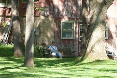 Harry's House (Alemap.1) Tags: farm person elderly landscape nature