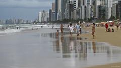Praia de Boa Viagem (Lucia Cysneiros) Tags: brasil praiadeboaviagem praia beach vero recife
