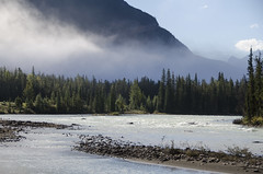 Jasper 2__DAD2503 (dadart) Tags: vacation canada jasper nationalpark alberta athabasca sunwapta