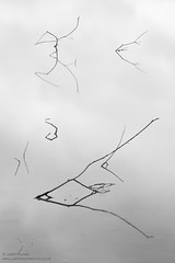 (Justin Haynes Photography) Tags: neutraldensity nikon nature water le lake westmidlands minimalist unitedkingdom britain afsnikkor2485mmf3545 uftonnaturereserve filter zoomlens europe uk landscape gb greatbritain nd warwickshire minimal midlands longexposure manfrotto tripod formatthitech ufton monochrome mono blackandwhite england reflection uftonfields branches d7100 branch