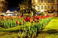 CRW_9868 (Diamantino Dias) Tags: portugal vila do conde rio ave noite gua luz nocturno flores canon espelho