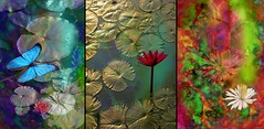 Triptych: Water Lilly Variations (Sandra Wolfe (formerly lalique7)) Tags: artnetll waterlilies