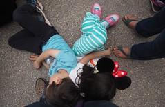 Tired Children Resting (foilman) Tags: jasper poppy ears resting tired