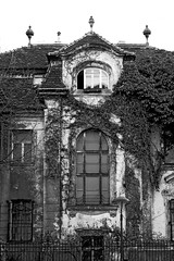 Welcoming (C_MC_FL) Tags: old decay house building bw blackandwhite blackwhite vienna canon eos 60d tamron a007 2470 architecture facade alt verfall haus villa mansion gebude sw schwarzweis wien architektur fassade fotografie photography window fenster