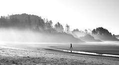 Into The Fog (.enKay) Tags: tofino britishcolumbia canada bc canon 60d tamron 2470 black white photography mist fog nature landscape trees house building vacation contrast blackandwhite bw blackandwhitephotography beach beaches water bay chestermanbeach seascape rocks tide ocean people outdoors supershot