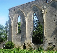 St. Emilion wall