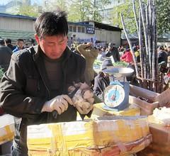 Beijing Farmers Market - 10150106695756425
