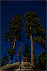 Starry Night (L.F.Lee) Tags: california camping nationalpark sequoia 2012 kingscanyonnationalpark