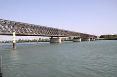 le pont Eiffel  Avignon (Dominique Lenoir) Tags: bridge france puente photo eiffel rhne ponte pont bro brug brcke avignon vaucluse southfrance silta 84000 dominiquelenoir