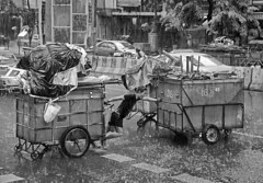 Hard work (Andrew Tan 2011) Tags: road blackandwhite bw rain thailand bangkok labor strong push thumbsup tough hardwork silom twothumbsup crossingtheroad thumbwrestler matchpointwinner thechallengefactory thepinnaclehof kanchenjungachallengewinner tphofweek167 mpt214 mpt300