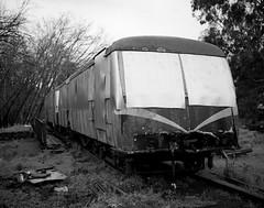 kodak porta400mamiya7  b604-2 (.Damo.) Tags: mamiya healesville trains trainstation epson mamiya7ii epsonv700 80mmf4 fuji400proh healesvilletrain