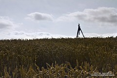 'Day of the Tripods' (DMeadows) Tags: field landscape photography scotland fife farm wheat tripod farming cereal crop agriculture agricultural farmed davidmeadows dmeadows dameadows yahoo:yourpictures=yoursummer yahoo:yourpictures=yourbestphotoof2012 yahoo:yourpictures=light