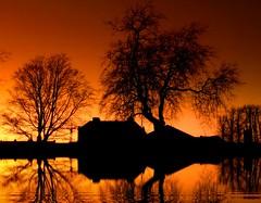 Days end. (Edward Dullard Photography. Kilkenny, Ireland.) Tags: trees kilkenny ireland light sunset reflection nature landscape licht twilight emeraldisle edwarddullardphotographykilkennycityireland