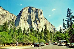Yosemite National Park (faungg) Tags: park travel trees sky usa mountain green cars nature rock stone pine us scenery traffic rocky scene yosemite yosemitenationalpark