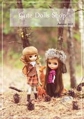 CDS Autumn 2012