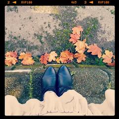 Give a girl the right shoes, and she can conquer the world. (stjernesol) Tags: autumn red brown leaves mobile golden leaf shoes style monday 2in1 ig itookthisawhileback butitissomuchfun forbenchmonday instagram butsinceihaveshoesonmyfeetwouldlookdarnstrangewalkingaroundtownwithoutichoosethisfortodaysmeagainmondaytoo soonfinishedwithmybenchmondayproject meagainmondaywellidontknow flickrsertainlytakesupalotoftime andsooniwillhavecompletedmy365366andthatjustprovesthatanythingispossiblesinceithasbeenoneoftheyearsihaveworkedthemosttoo somyshoesyousaywellactuallytheyareboots perfectfortheskirtanddresslovingwomanthatiam wearingadresshere youcanonlyseetheskirtpart idolovethoseleaves socripsandtheircolourpopsout happymeagainmondayandbenchmonday standingonabrickwallshootingdown