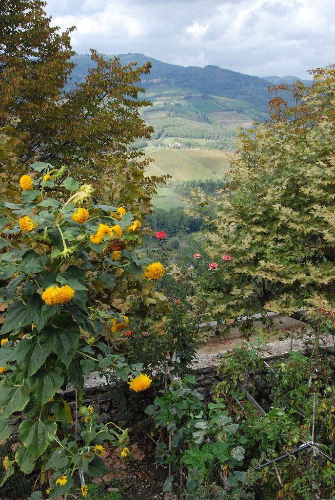 liten trädgård i en liten by, Italien