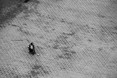(Stationary Nomads) Tags: warsaw poland polska capital city architecture design oldtown motherland amenaamer canon 500d blackandwhite bnw monochrome square oldtownmarketsquare marketsquare staregomiasta rynekstaregomiasta warszawa polish