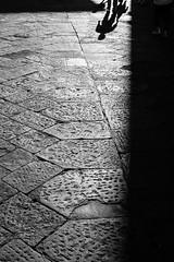 _DSF0775 (GienBi) Tags: street blackandwhite blackwhite firenze biancoenero controluce contrasto pietraviva