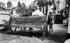 A Seat With A View (TMimages PDX) Tags: iphoneography photography image photo photograph streetscene fineartphotography geotagged people urban city street streetphotography portland pacificnorthwest sidewalk pedestrians buildings blackandwhite monochrome vignette square plaza bench