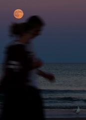 2016-07-19 Moonrise at Beach (213) (Paul-W) Tags: ocean blue sunset sky seagulls water clouds sand couple surf waves purple wells moonrise ogunquit 2016 northogunquitbeach