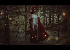 The fireflies. (Megan Glc Photographe) Tags: fireflies redridinghood red hood dress blood trees woods forest dark onceuponatime fairytales tales fairy magical surreal editing photomanipulation photoshop manipulation portrait girl lights fantasy surrealist