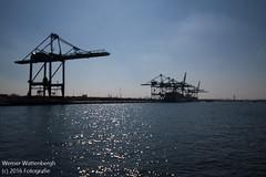 Flandria Havenrondvaart [9] (Werner Wattenbergh) Tags: flandria ferry schip veerboot antwerpen belgie bel