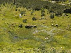 P8200127 (turbok) Tags: berge bergsee donnersbach landschaft planneralm wasser