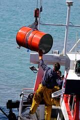 DSCF1493 (Jc Mercier) Tags: pche retourdepche fishermen marins cancale