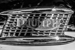 Triumph 6T Thunderbird (michael_hamburg69) Tags: hamburg germany deutschland hansestadt motorrad triumph 6t thunderbird classicbike vintage motorcycle 19601962 logo firmenlogo markenlogo detail