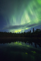 Aurora season started yesterday (L.Matero) Tags: leivonmkirevontulet canon 6d samyang 14mm f28 aurora borealis northern lights suomi finland national park reflection sky green trees silhouette pond stars night photographty nightshot long exposure