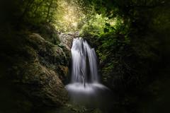 Quella luce oltre la vita... (Salvatore Brontolone) Tags: ferriere valle water acqua erba cespuglio waterfall amalfi salerno rocce bagliore luce light pianta