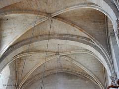 Saint-Hilaire - Abbaye - Eglise (Fontaines de Rome) Tags: aude sainthilaire saint hilaire abbaye eglise nef