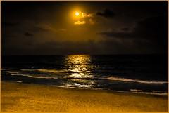 Anochecer en Sitges. (De carrusel) Tags: 2016 mar nocturnas carrusel