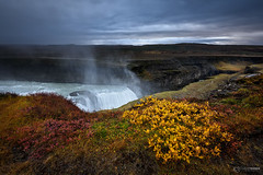 Golden Falls (CResende) Tags: gullfoss iceland niceland golden landscape fall water sunrise river waterfall d810 nikon goldencircle edge hvita southwest cresende travelphotography