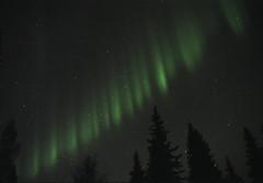 Stairway to Heaven (film) (northern_nights) Tags: 100v10f northernlights aurora auroraborealis fairbanks alaska film