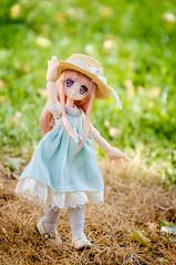 Litchi (Alix Real) Tags: azone azonedoll azonejp azoneint int jp pureneemo pure neemo picco lilfairy lil fairy neilly kibou no hotori mori country outfit anime manga kawaii doll dolls mueca